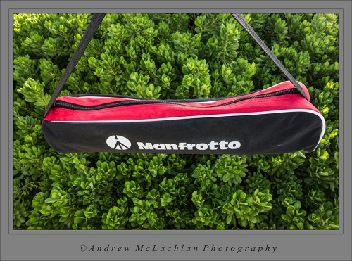 Manfrotto BeFree Tripod Bag