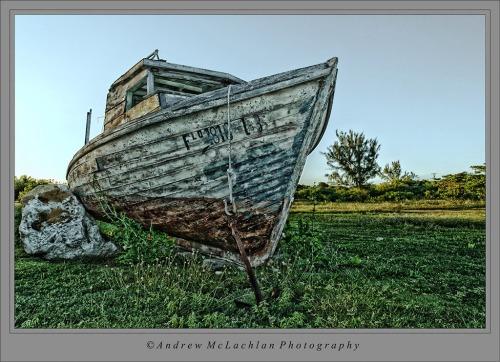 Old Boat_8532