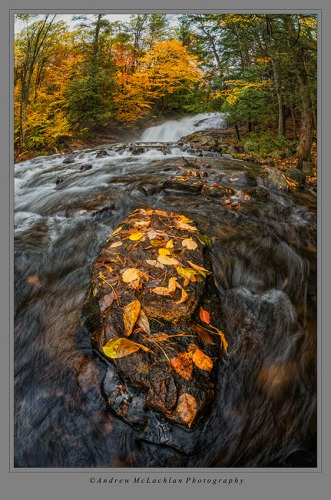 Hatchery Falls on the Skeleton River, Muskoka, Ontario. Nikon D800, Sigma 15mm f2.8 EX DG Fisheye Lens, ISO 100, F16 @ 0.4 sec