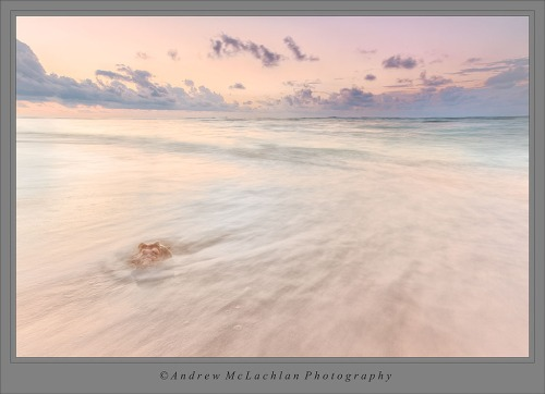 Conch Shell Sunrise on the Caribbean Sea, Cayman Brac, Cayman Islands