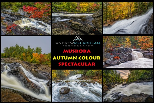 Muskoka Fall Colour Spectacular